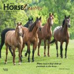 Horse Lovers 2019 Square Wall Calendar