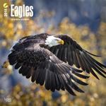 Eagles 2018 Wall Calendar