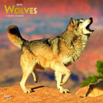 Wolves 2019 Square Wall Calendar