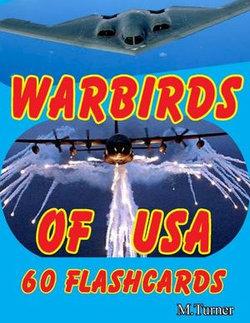 Warbirds of USA 60 Flashcards