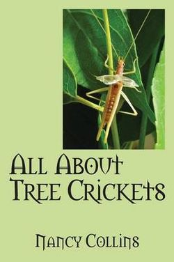 All about Tree Crickets