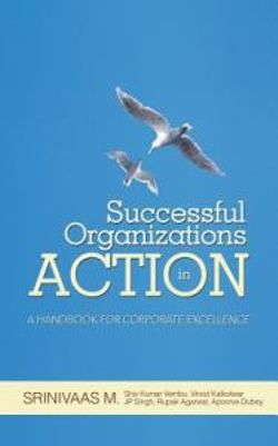 Successful Organizations in Action