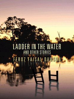 Ladder in the Water and Other Stories