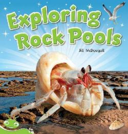 Bug Club Level 14 - Green: Exploring Rock Pools (Reading Level 14/F&P Level H)