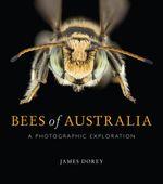 Bees of Australia
