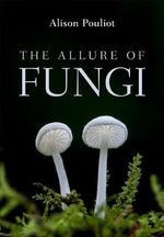 The Allure of Fungi