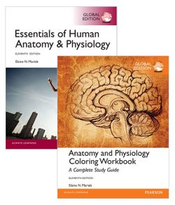 Value Pack Essentials of Human Anatomy & Physiology Global Edition + ...