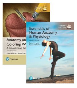 Essentials of Human Anatomy & Physiology, Global Edition + Anatomy and Physiology Coloring Workbook
