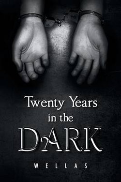 Twenty Years in the Dark