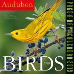 Audubon Birds Page-A-Day Desk Calendar 2019
