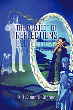 The Project of Reflections