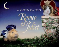 A Guinea Pig Romeo and Juliet