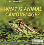 What Is Animal Camouflage?