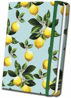 Citrus Satin Journal