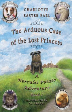 The Arduous Case of the Lost Princess