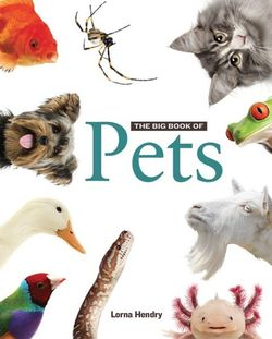 Big Book of Pets