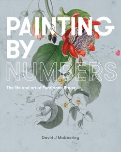 Painting by Numbers