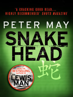 Snakehead: The China Thrillers 4