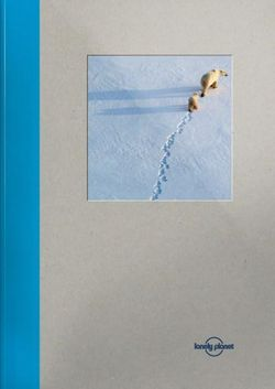 Lonely Planet Large Notebook - Polar Bear