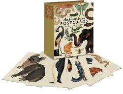 Animalium: Postcard Set