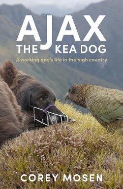 Ajax the Kea Dog