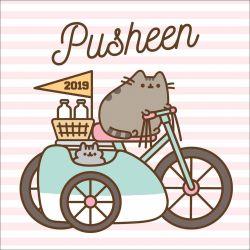pusheen official 2019 square wall calendar 2019 wall calendar calendar pub 15092018