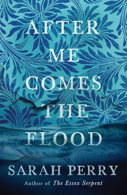 After Me Comes the Flood