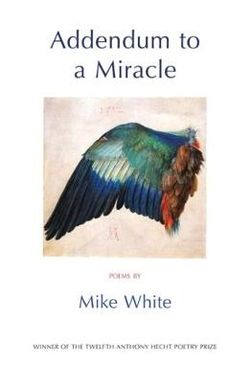 Addendum to a Miracle