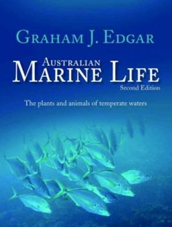 Australian marine life by graham edgar angus robertson books australian marine life the plants and animals of temperate waters by graham edgar pub 01052012 fandeluxe Images