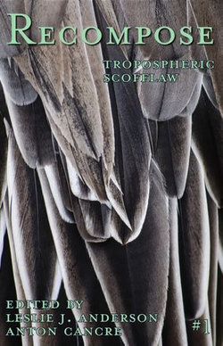 Tropospheric Scofflaw