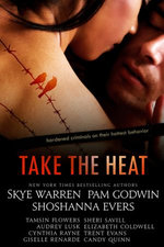 Take the Heat: A Criminal Romance Anthology