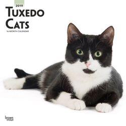 Tuxedo Cats 2019 Square Wall Calendar