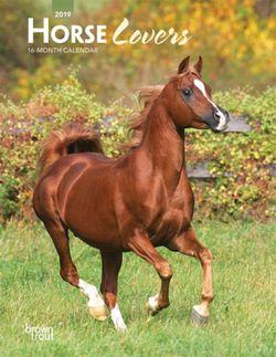 Horse Lovers 2019 Engagement Calendar