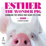 Esther the Wonder Pig 2019 Square Wall Calendar