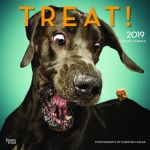 Treat! 2019 Square Wall Calendar
