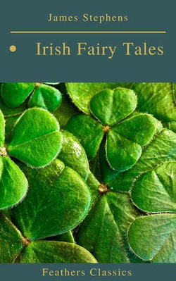 Irish Fairy Tales (Feathers Classics)