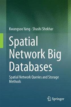 Spatial Network Big Databases