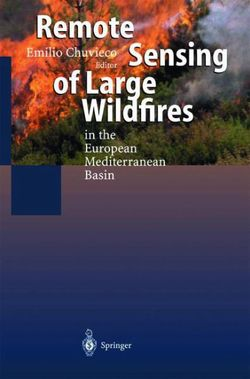 Remote Sensing of Large Wildfires