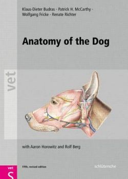 colour atlas of clinical anatomy of the dog and cat softcover version