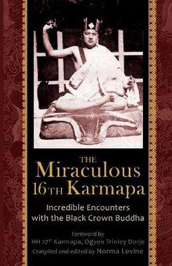 The Miraculous 16th Karmapa